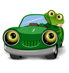 Frog in the car vector image
