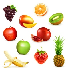 Fruits set of vector image vector image