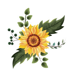 Beautiful sunflower drawing vector