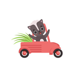cute little skunk driving a car adorable baby vector image