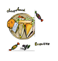 different pieces of cheese on a plate vector image