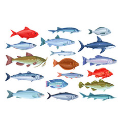 Fish icons seafood vector