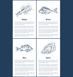 Lobster and bream bass set vector