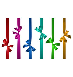 realistic colored bow with vertical ribbon vector image