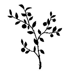 Silhouette of bilberry plant vector