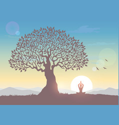 Sunrise tree yoga vector