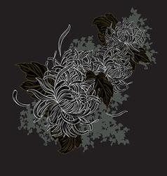 White Chrysanthemum vector image vector image