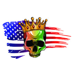 draw skull and flag usa vector image