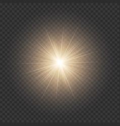 Golden shiny star vector
