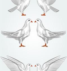 Seamless texture white dove vector