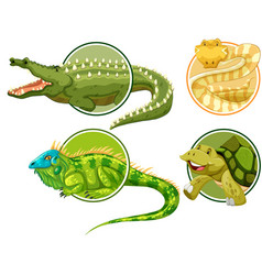 Set reptile on circle sticker template vector
