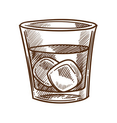 Whiskey cola and ice cubes in glass isolated vector