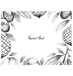 Hand drawn frame of jujube and rattan fruits vector