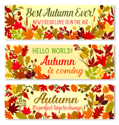 Autumn banner of fall season forest nature frame vector