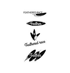Black feathers silhouettes for logotype design vector image