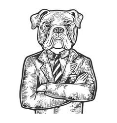 Bulldog businessman engraving vector