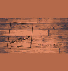 New mexico map brand vector