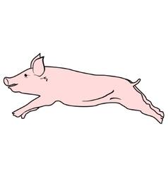 Pig design vector