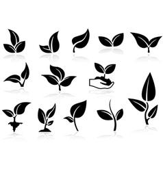 Plants Icons Set vector image