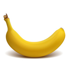 ripe yellow banana isolated on white background vector image
