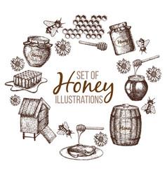 Set of honey sketch vector