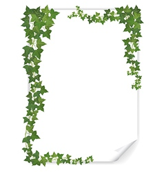 White paper sheet decorated ivy vector
