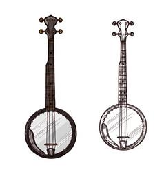 sketch banjo guitar musical instrument vector image vector image
