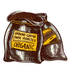 bag coffee beans in vintage style hand drawn vector image