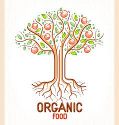 beautiful apple fruit tree natural organic farm vector image