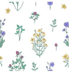 Elegant botanical seamless pattern with flowering vector