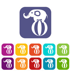 Elephant balancing on a ball icons set vector