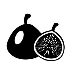 fig icon simple of icon vector image
