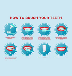 How to brush your teeth step-by-step instruction vector