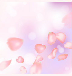 Pink sakura or rose falling petals vector