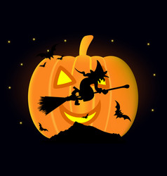 witch on a broomstick vector image