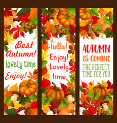 Autumn holiday of thanksgiving day banner set vector