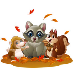 Cartoon funny raccoon hedgehog and squirrel in th vector