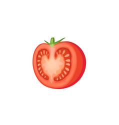 Cut tomato icon vector