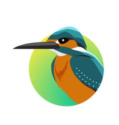 kingfisher flat design vector image