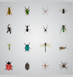 Realistic poisonous housefly ant and other vector