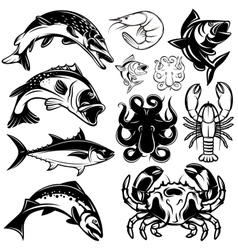 Set monochrome freshwater and marine fish and vector