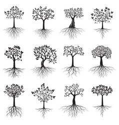 Set trees with roots on white background vector