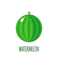 Watermelon icon in flat style on white background vector image