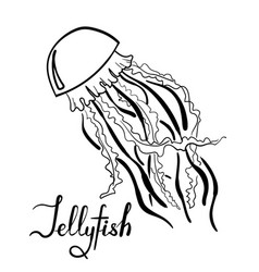 hand drawn jellyfish with lettering isolated vector image