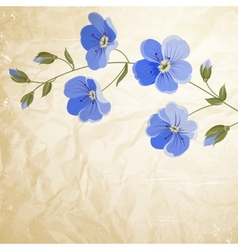 Blossoming flower brunch vector image vector image