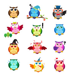 different owls with different expressions vector image