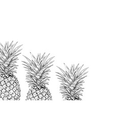 pineapples on a white background for printing vector image