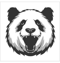 Portrait of Panda Aggressive face bears vector