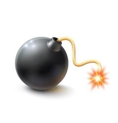 Realistic Bomb vector image