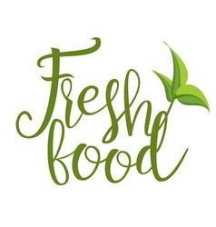fresh organic natural product design vector image